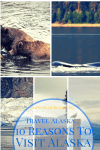 Visit Alaska 10 reasons to visit Alaska