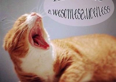 This Week's Awesomesauceness
