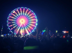 Pictured above is a scene of the Electric Daisy Carnival from May 2013.  Similarly to the Electric Zoo Festival, molly is a pertinent drug that is passed around and consumed at this rave concert, as well as many others rave concerts.