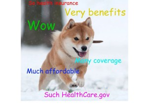 "The federal government's version of the ""doge"" meme."