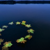 drapeau-europe-ue-eau-2536502_1713
