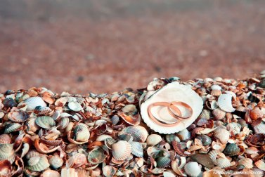 beach-themed-weddings-rings
