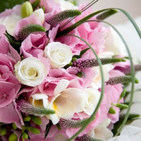 Flowers-110411