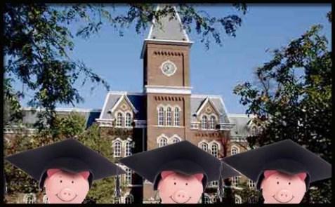 pig college