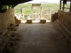 View of the synagogue in Susya