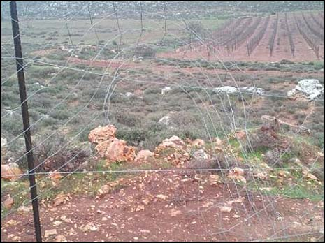 The Esh Kodesh fence and fields.
