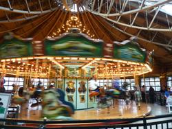 Einhorn-011813-merry-go-round