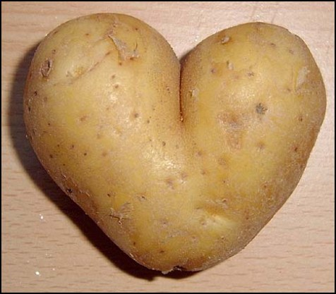 potato_heart_mutation11