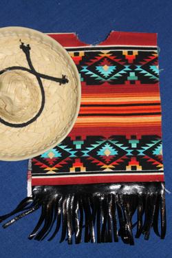 Ottensessor-021513-Mexican