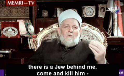 Egyptian Minister of Religious Endowments Ali Afifi.