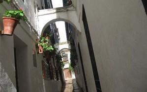 Flower Street, Cordoba