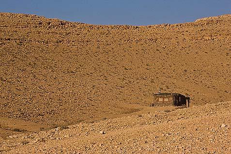 Desert Sukkah