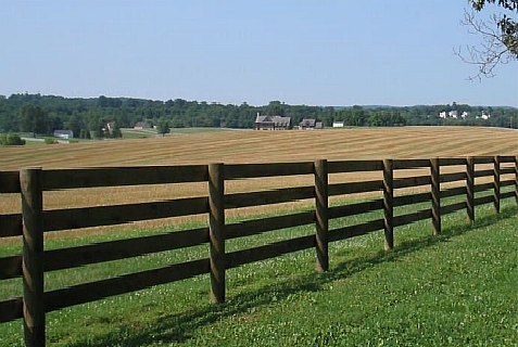 None of the security fences around the world look like this fence which can barely contain livestock.