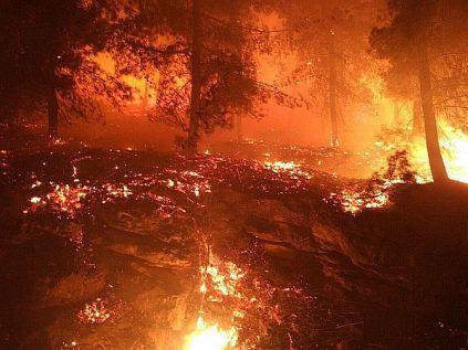 Geva'ot forest fire.