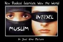 How Radical Islamists View the World