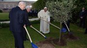 Israeli President Shimon Peres, Palestinian Authority leader Mahmoud Abbas and Pope Francis plant a tree together at the Vatican Gardens during a joint peace prayer initiated and hosted by Pope Francis, in the Vatican, on June 8, 2014.