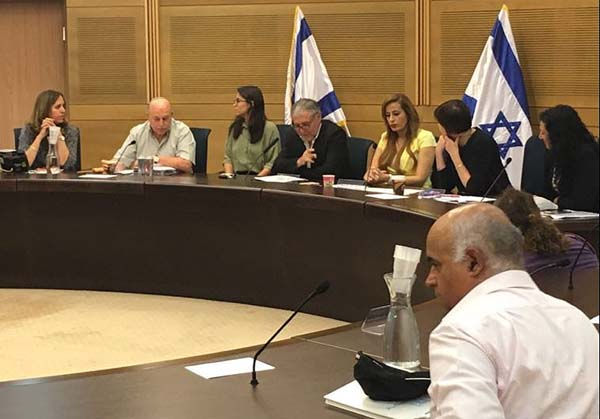The Knesset Constitution, Law and Justice committee / Courtesy the Knesset