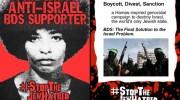 Anti-BDS flier