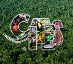 CITES Logo des WWF