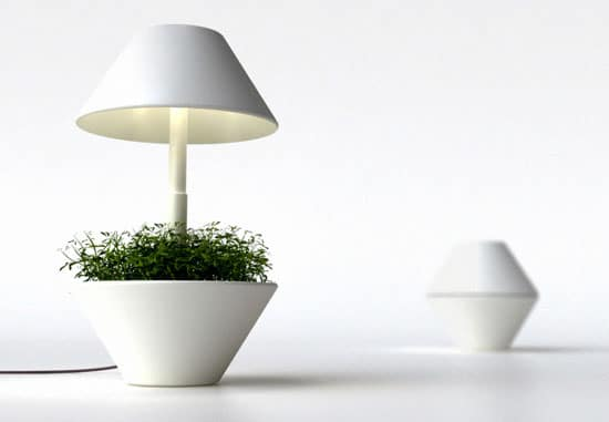 lamp01