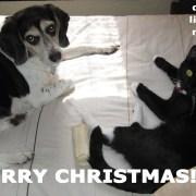 jimonlight-merry-christmas