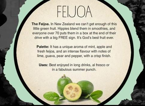 feijoa-write-up