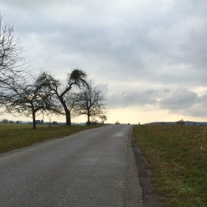 fahrradtour_ziel