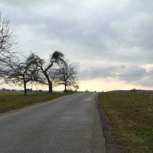 fahrradtour_ziel.jpg