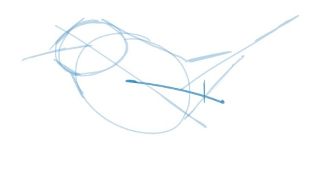 Note where you first see the wing and draw a line to the wingtip. The wing may be drooped (as in this bird) or tucked neatly on the back. Add little tic mark to where the secondary feathers end.