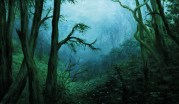 Lush green misty jungle scene