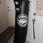 Fight-Monkey-Heavy-Bag_thumb.jpg