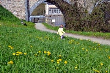 chemin de halage abbaye du Port du Salut