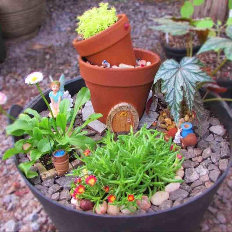 Voguish Plants Suitable S Or Or Wet Or Dry Pair Ly Withwhatever Accessories You Make Your Own Me Fairy Gardens Farmer Make Your Own Fairy Garden Party Create Your Own Fairy Garden Kit