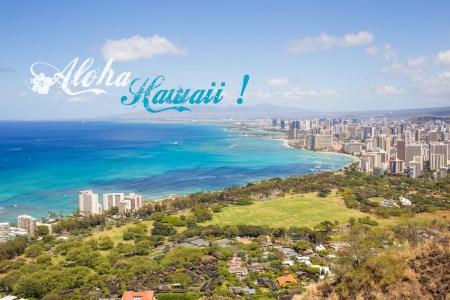 Aloha Hawaii !!