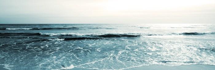 Havet Falsterbo