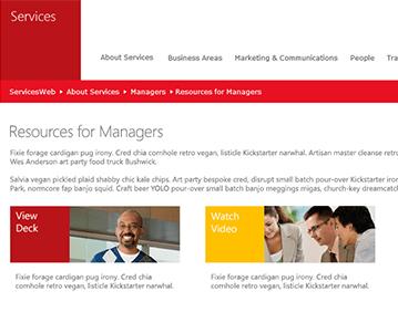 ServicesWeb internal website - work includes design, development, support, management