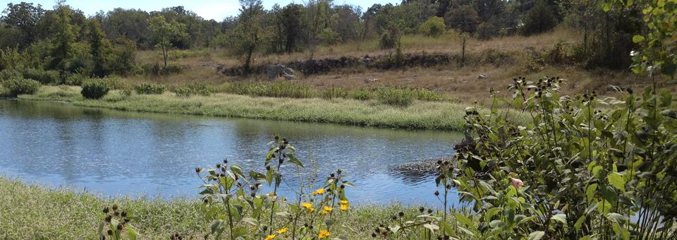 Wildcat Glades Conservation and Audubon Center