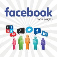 Module-prestashop-facebook-social-plugin