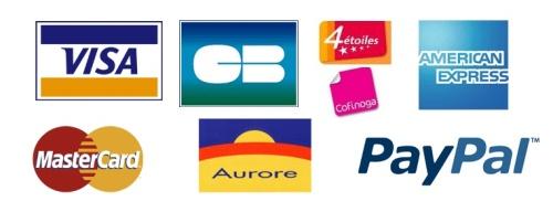 payline-avis-logo-tarif-moyen-paiement