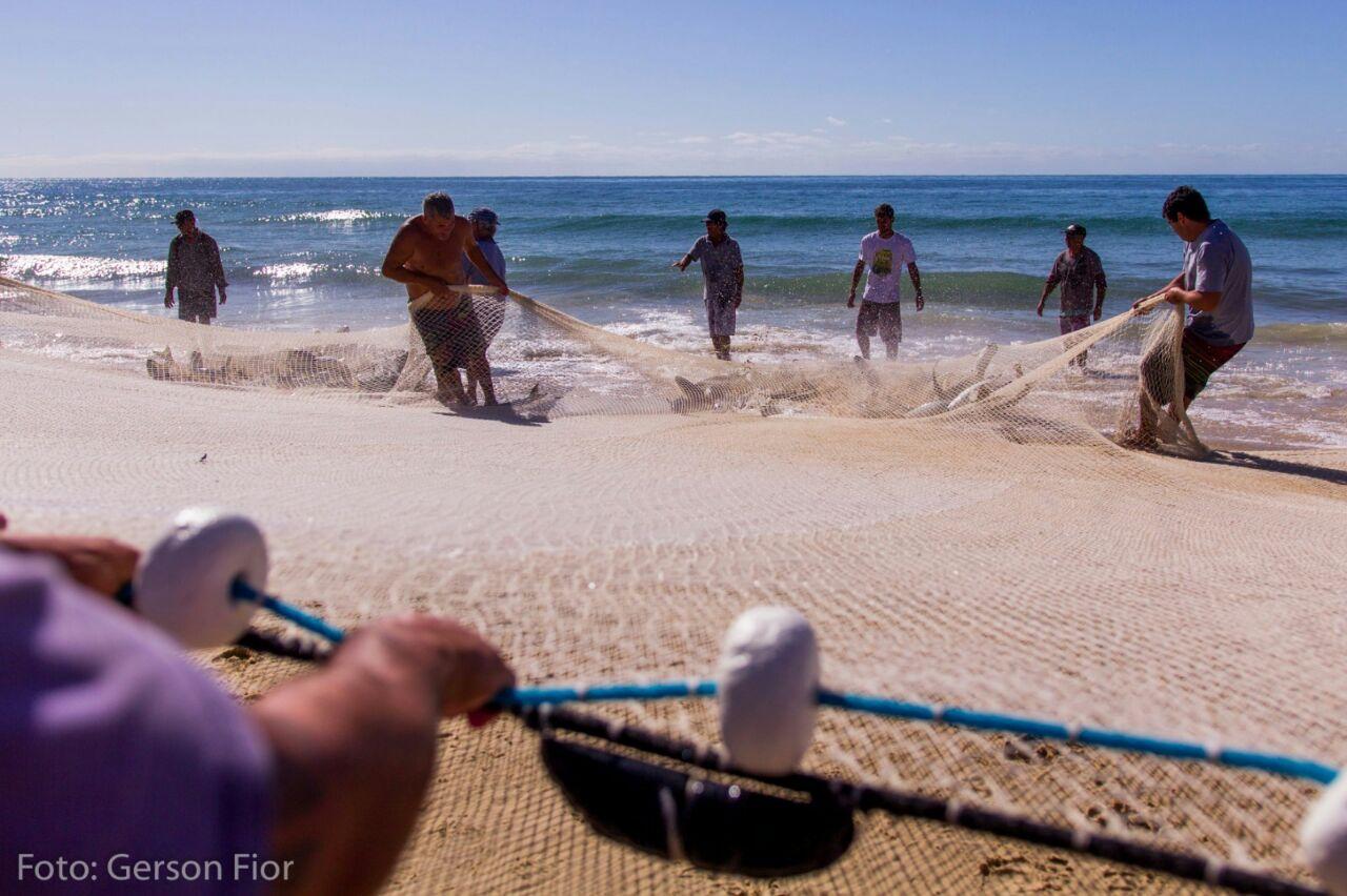 pescadores-tainha-ingleses-03