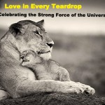 Love in Every Teardrop – Celebrating the Strong Force of the Universe