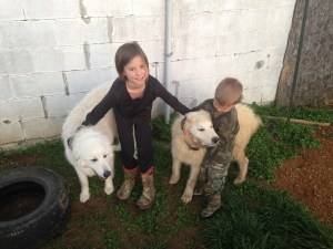 Brooke with her two Great Pyrenees Dogs and Caleb!