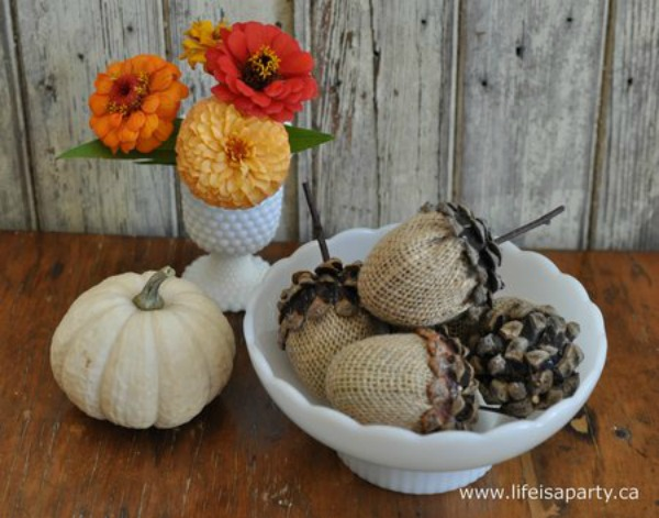 acorn craft