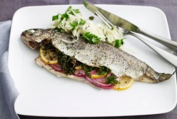 Distinguished Whole Fish Jamie Geller Grilled Mountain Trout Recipes Grilled Trout Recipes Fennel Recipes Whole Baked Trout Dill