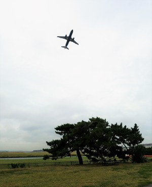 Take Off at Gravelly Point