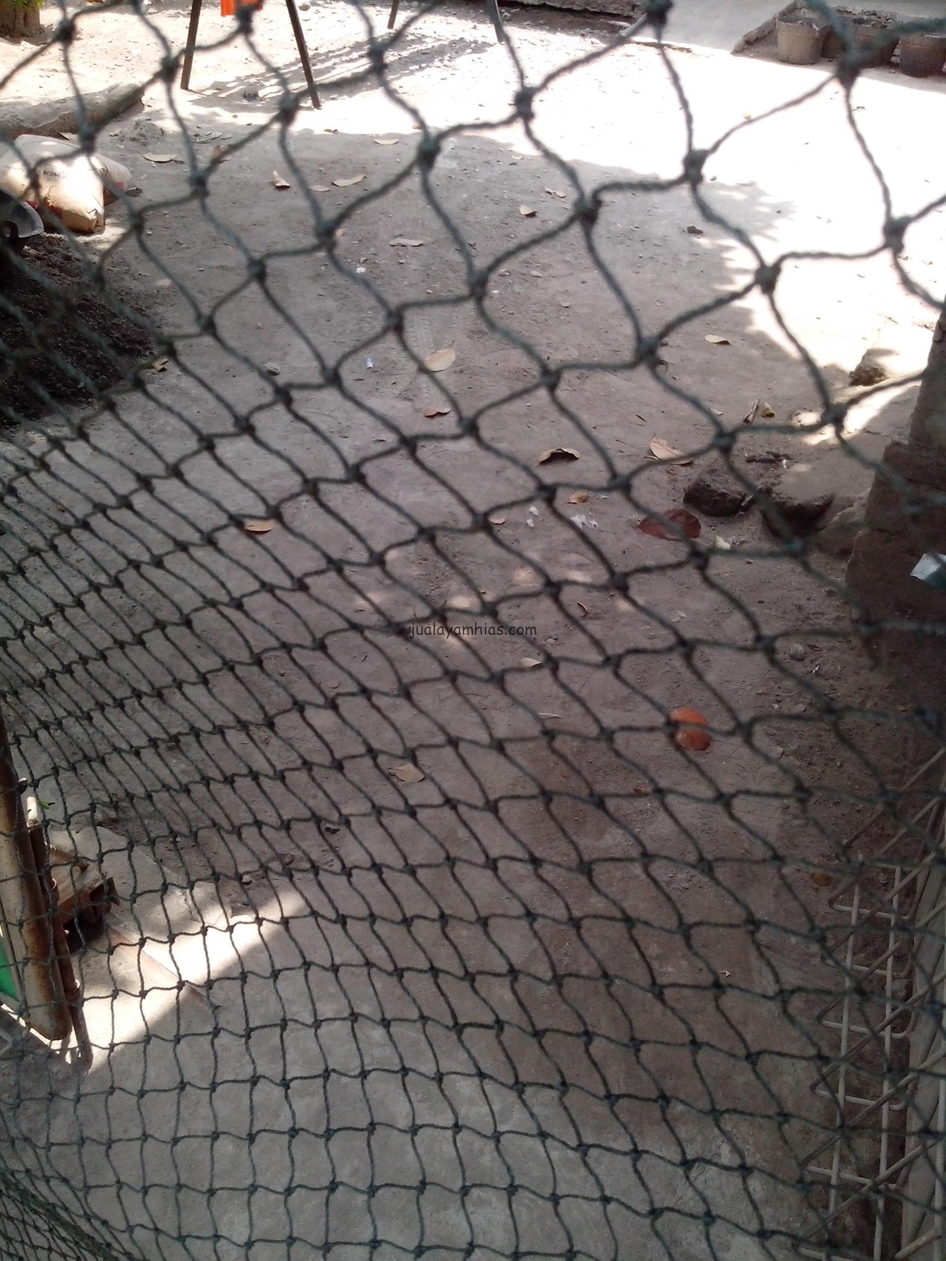 Jaring Kandang Ayam untuk Ayam Kampung maupun Ayam Jenis Lain