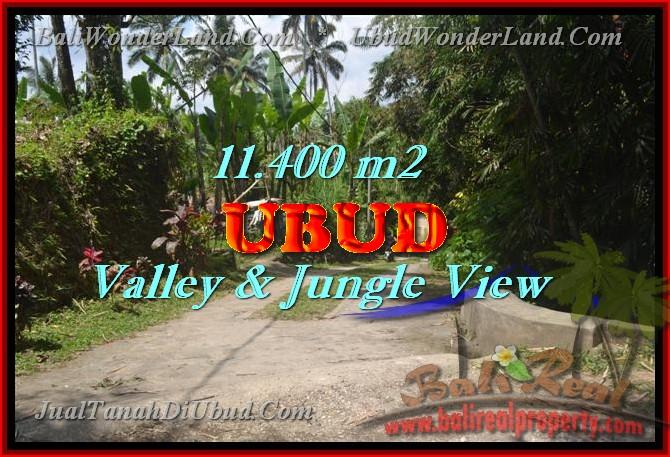 Jual Tanah murah di UBUD TJUB431 – investasi property di Bali