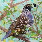 """Quail of a Bird - Mayo ClinicCOMMISSIONPaper Collage on Wood Panel30""""x 30"""""""