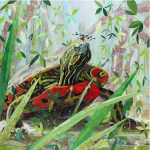 "Sunning Turtle - Mayo Clinic    COMMISSIONPaper Collage on Wood Panel30""x 30"""