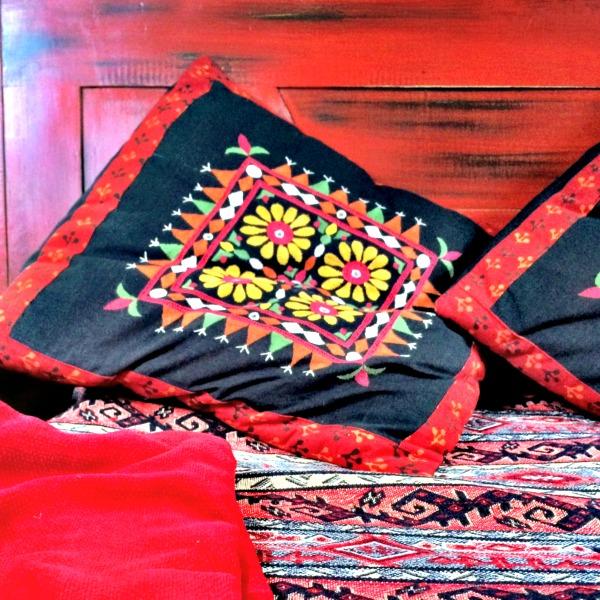 zenaya cushions